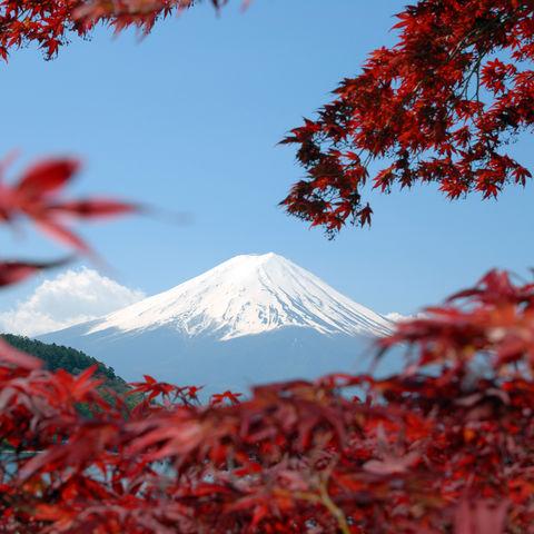 Mount Fuji im Herbst © Thinkstock, iStockphoto
