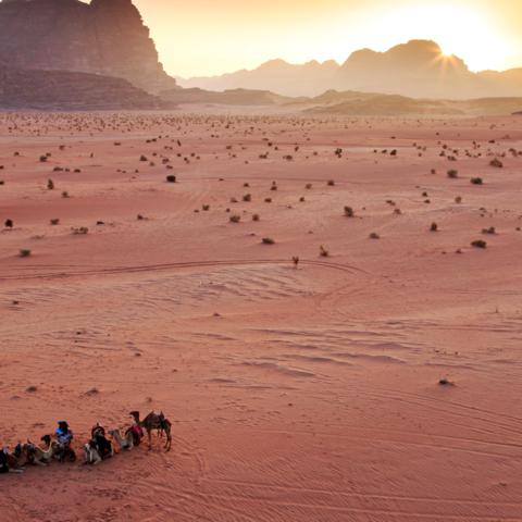 Kurzer Stop während des Sonnenuntergangs: Kamelkarawane, Wadi Rum Wüste, Jordanien