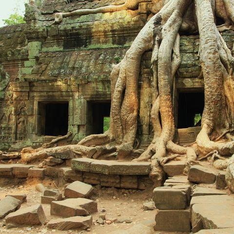 Der Ta Prohm, Kambodscha