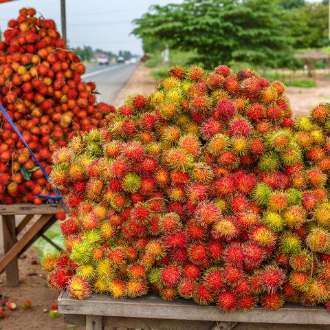 Rambutan im Straßenverkauf, Kambodscha