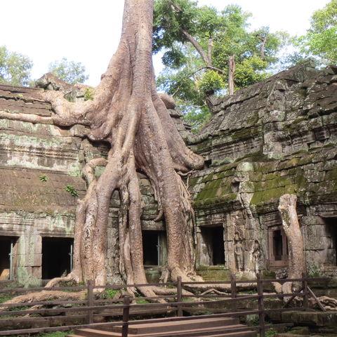 Kambodscha & Vietnam