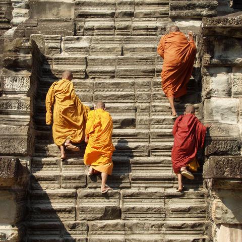 Junge Mönche laufen eine Treppe zum Tempel hinauf, Kambodscha
