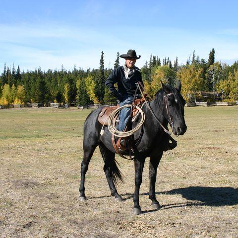 Pferderanch in Chilcotin, Kanada