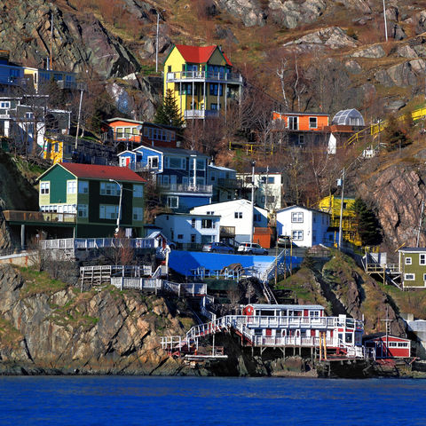 Bunte Häuser an der Steilküste in St. Johns, Kanada