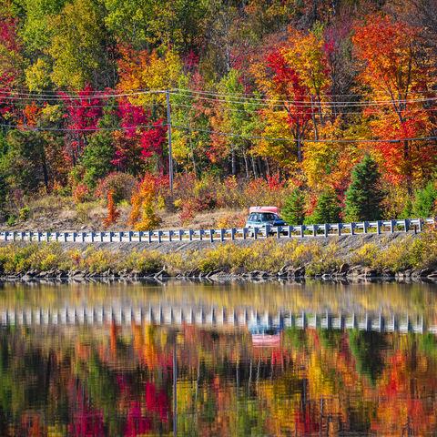 Herbstfarben im Algonquin-Park, Kanada