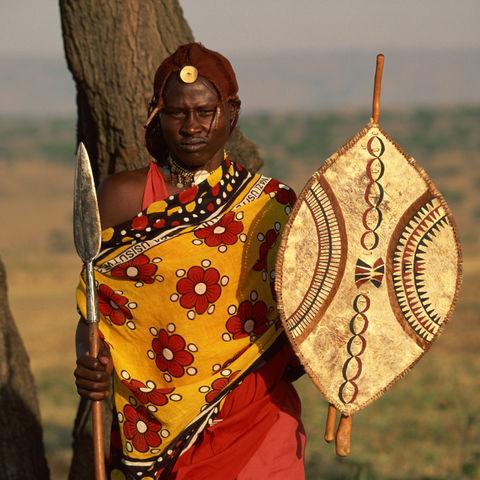 Afrikanischer Jäger, Kenia