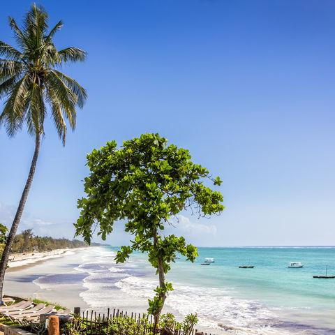 Beach Time am Diani Strand!, Kenia