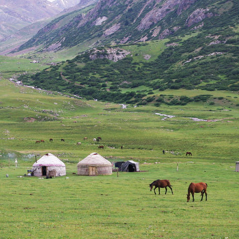 Jurten und Pferde, Kirgistan