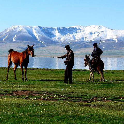 Nomaden mit ihren Tieren, Kirgistan