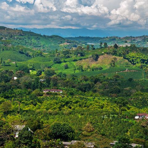 Blick auf die Kaffeeregion, Kolumbien