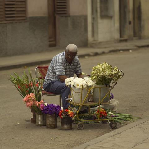 Blumenverkäufer, Kuba