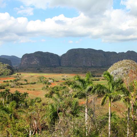 Kontrastreiches Viñales-Tal, Kuba