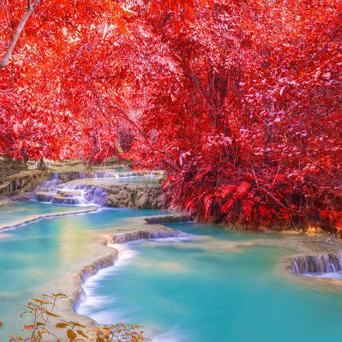 Wenn das nicht nach einem verlockendem Bad aussieht? Kuang Si Wasserfälle, Luang Prabang, Laos