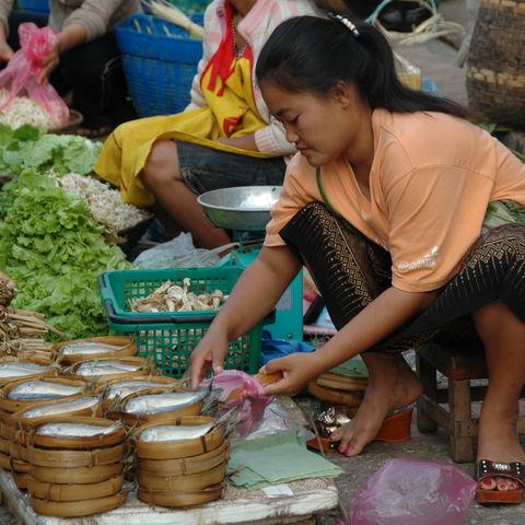 Verkäuferin auf einem Markt, Laos