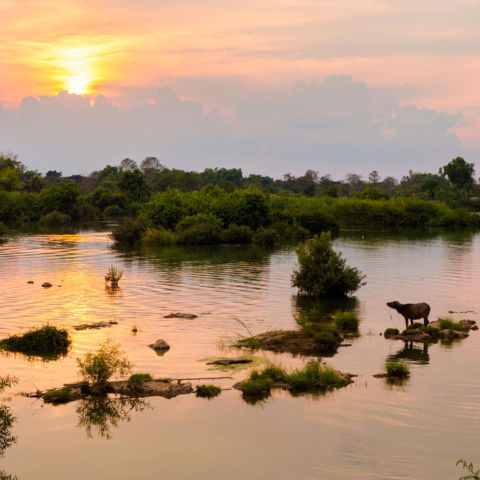 Sonnenuntergang über den 4.000 Inseln im Mekong, Don Det, Laos