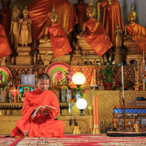 Junger Mönch studiert die Lehren Buddhas, Laos