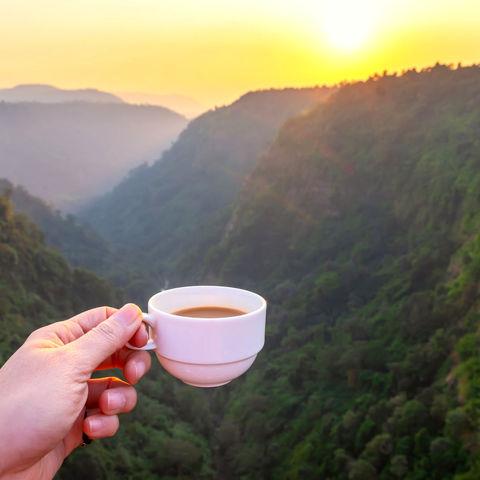 Tasse Kaffee bei Sonnenuntergang im Süden, Laos