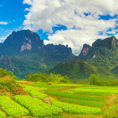 Landschaft von Vang Vieng © Olga Khoroshunova, Dreamstime.com