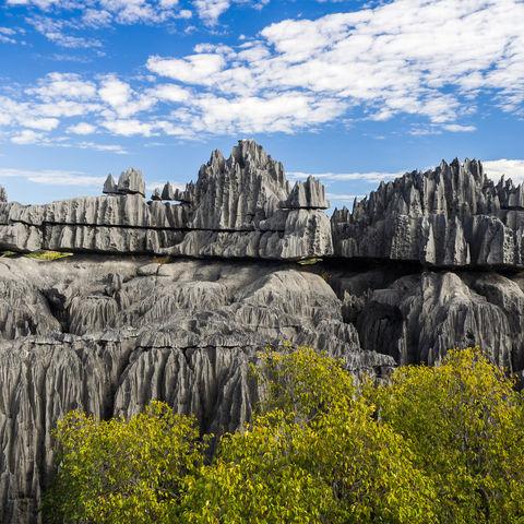 Spektakuläres Kalksteinnadelgebirge: die Tsingys, Madagaskar