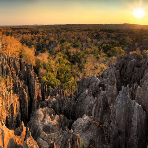 Die Tsingys des Bemaraha Nationalparks, Madagaskar