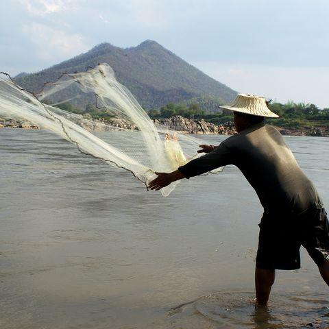 Fischer wirft sein Netz im Bako-Nationalpark, Malaysia