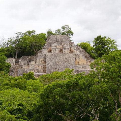 Hauptpyramide von Calakmul, Mexiko