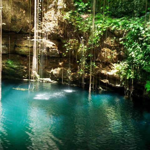 Mal in einer Unterwasserhöhle schwimmen?: Ik Kil Cenote, Yucatán, Mexiko