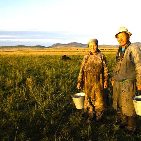 Freundliche Mongolen, Mongolei