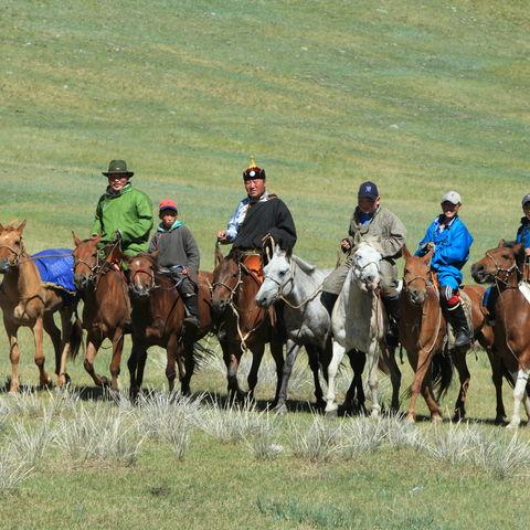 Hoch zu Ross: Mongolisches Reitervolk, Mongolei