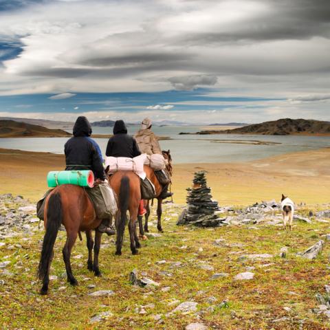 Pferde-Trekking in der Wildnis der Steppe, Mongolei