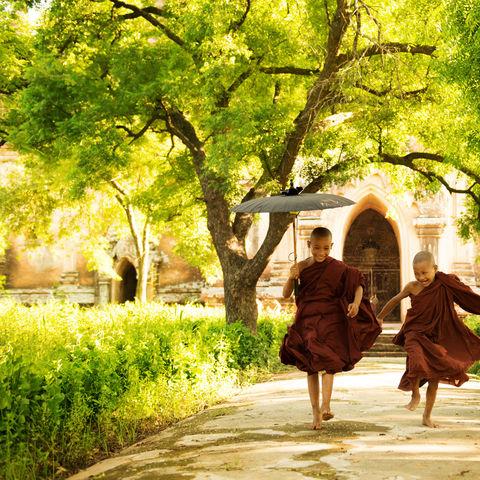 Spielende junge Mönche, Myanmar