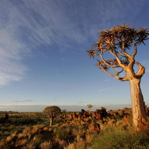 Faszinierende Wüstenlandschaft, Namibia