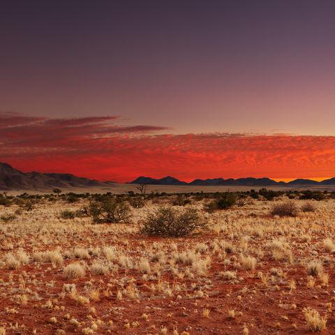 Sonnenuntergang über der Kalahari-Wüste © Dmitry Pichugin, Dreamstime.com