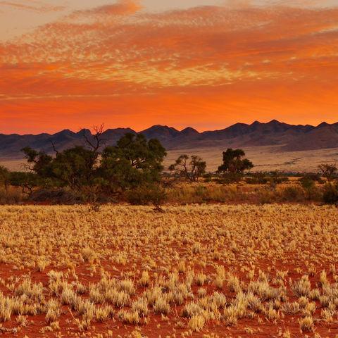 Wunderschöner Sonnenuntergang in der Kalahari, Namibia