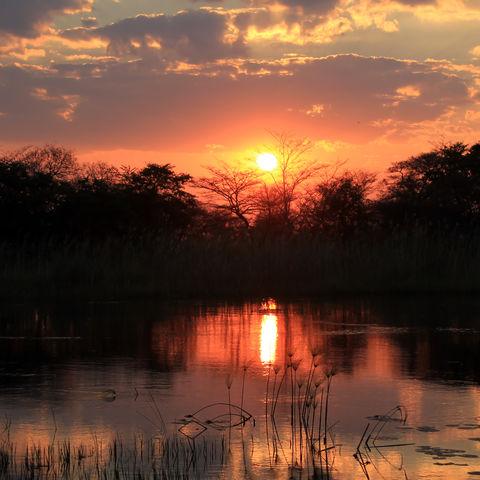 Sonnenuntergang am Kwando-Fluss, Namibia