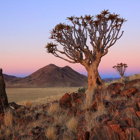 Afrikanische Landschaft im Sonnenunterganf © Pixcom, Dreamstime.com