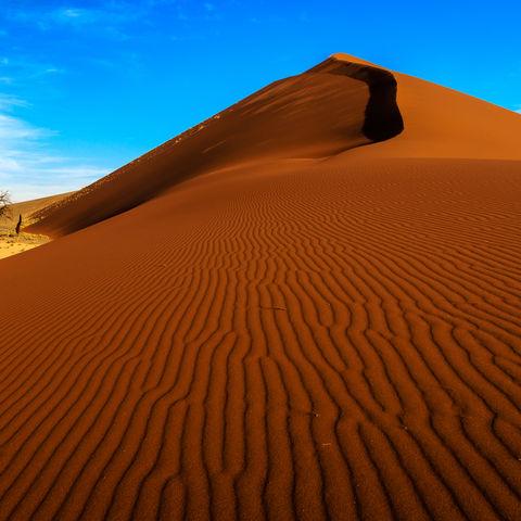 Düne 45 in der Namib-Wüste, Namibia