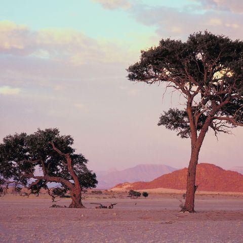 Karge Landschaft, Namibia