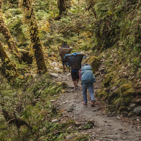 Träger wandern in den Bergen, Nepal
