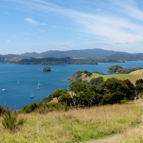 Panorama Bay of Islands, Neuseeland