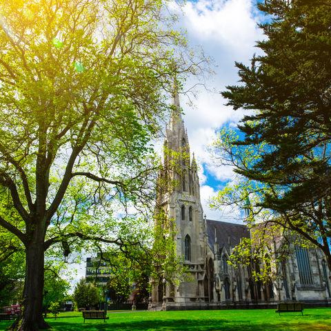 Römisch-katholische Kathedrale St. Josef (St Joseph's Cathedral) im Sonnenlicht, Dunedin, Neuseeland