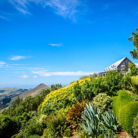 Unterwegs in den Gärten des einzigen Schlosses Neuseelands: Larnach Castle, Dunedin, Neuseeland