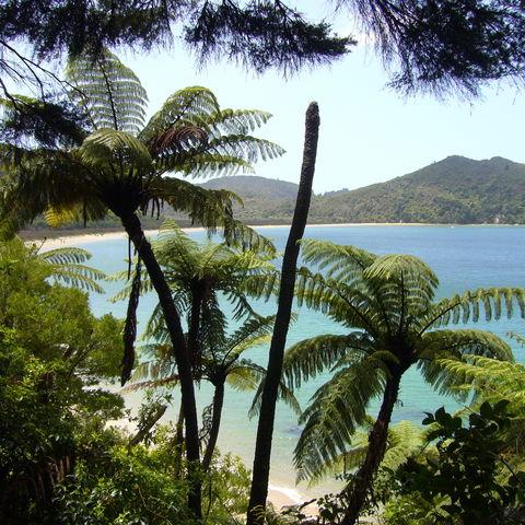 Malerischer Abel Tasman Nationalpark, Neuseeland