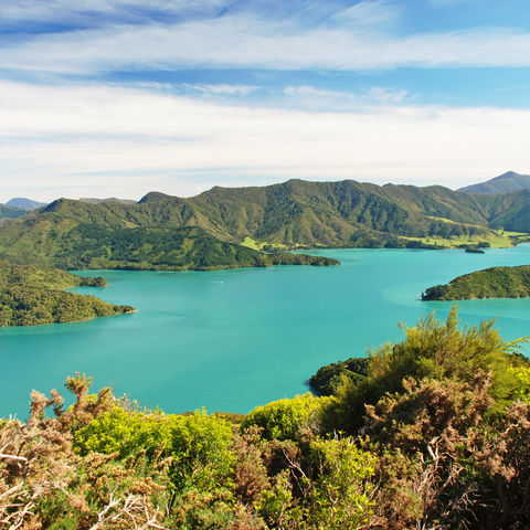 Paradiesische Marlborough Sounds, Neuseeland