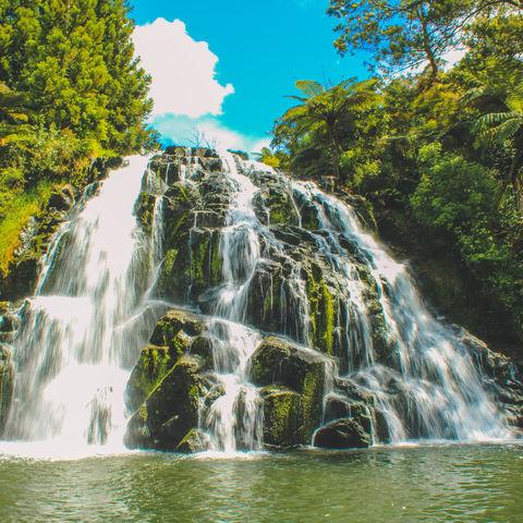 Gehören zu den schönsten Wasserfällen Neuseelands: Owharoa Falls, Neuseeland