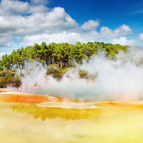 Dampf über einer heißen Thermalquelle in Rotorua, Neuseeland