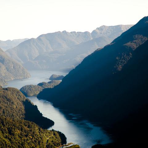 Fjordlandschaft im Sommer, Neuseeland
