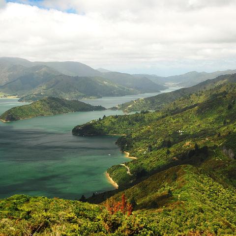Malerischer Queen Charlotte Sound, Neuseeland