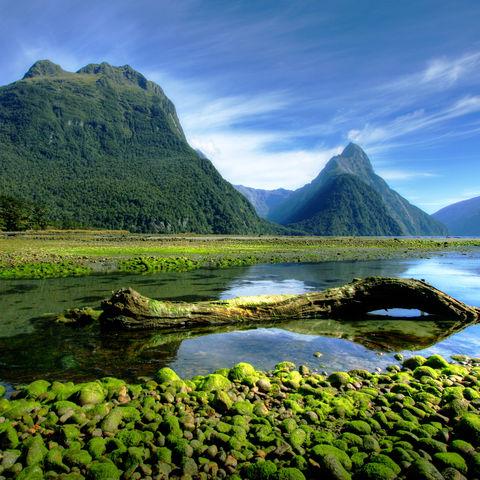 Mitre Peak im Milford Sound bei Ebbe, Neuseeland
