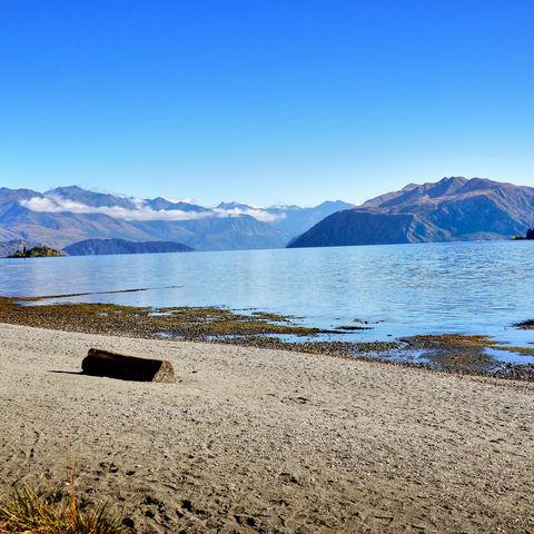 Ufer des Wanaka Sees im Herbst, Neuseeland